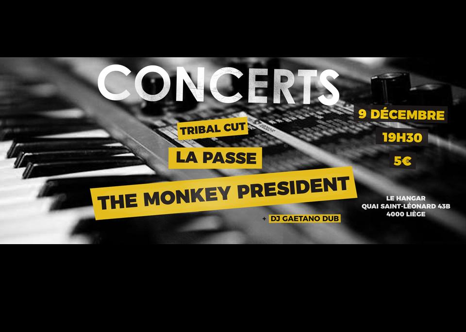 9 décembre / The Monkey President – La Passe – Tribal Cut + DJ Gaetano Dub